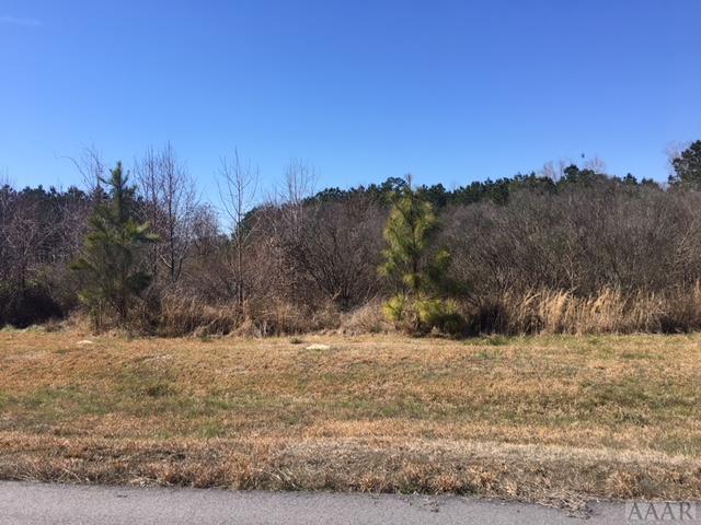 209 Winfall Circle, Edenton, NC 27932 (MLS #91596) :: Chantel Ray Real Estate