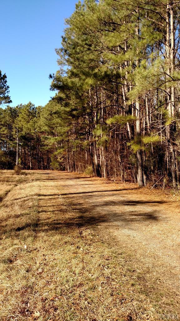 #4 Canaan Place, Hertford, NC 27944 (MLS #92067) :: AtCoastal Realty