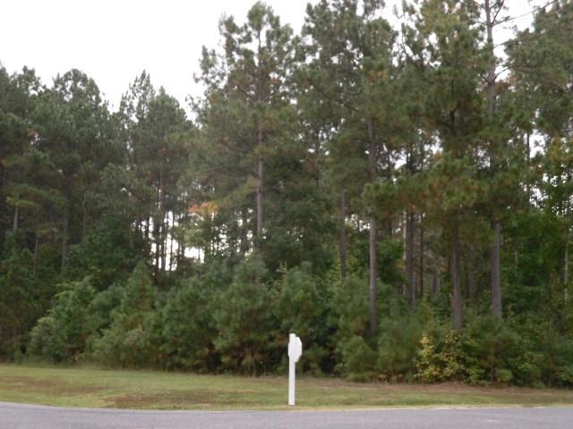 TBD Boshers Point Dr, Hertford, NC 27944 (MLS #92321) :: AtCoastal Realty