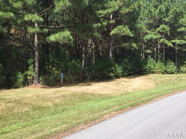 155 Colleton Circle, Edenton, NC 27932 (MLS #92680) :: Chantel Ray Real Estate