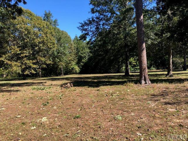 209 Lake Wood Dr, Edenton, NC 27932 (#92696) :: The Kris Weaver Real Estate Team