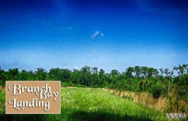 104 Branch Bay Court, Hertford, NC 27944 (MLS #93344) :: Chantel Ray Real Estate