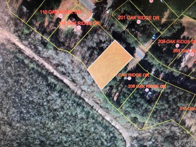 202 Oak Ridge Drive, Edenton, NC 27932 (#93504) :: The Kris Weaver Real Estate Team