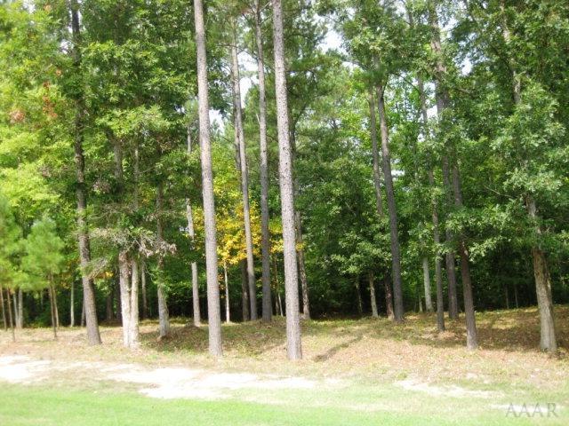 Lot 48 Bosher Point Drive, Hertford, NC 27944 (MLS #93586) :: Chantel Ray Real Estate