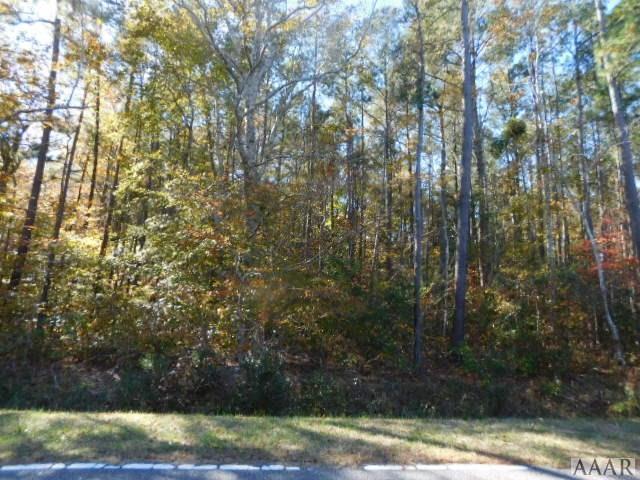 2424 Tulls Creek Road, Moyock, NC 27958 (MLS #93995) :: AtCoastal Realty