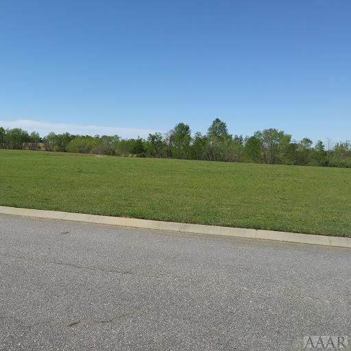 315 Scotch Hall Court, Merry Hill, NC 27957 (MLS #94934) :: Chantel Ray Real Estate