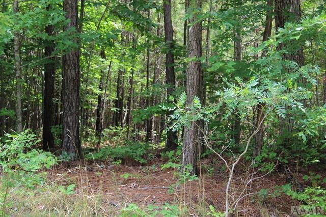 TBD Spruce Street, Hertford, NC 27944 (MLS #95102) :: Chantel Ray Real Estate