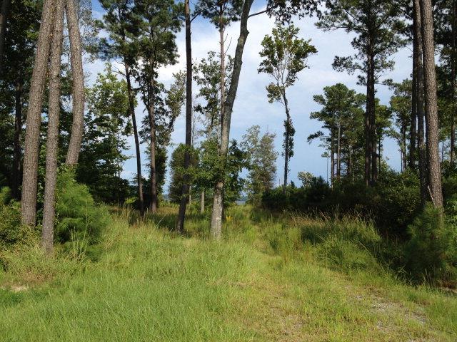 134 Dockery Drive, Hertford, NC 27944 (MLS #95426) :: Chantel Ray Real Estate