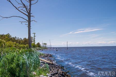 TBD Owens Lane, Columbia, NC 27925 (MLS #95531) :: Chantel Ray Real Estate
