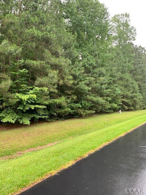 182 Pine Point Road, Hertford, NC 27944 (MLS #95719) :: Chantel Ray Real Estate