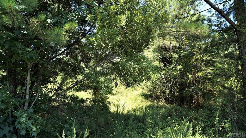 1795 Caratoke Hwy - Photo 1