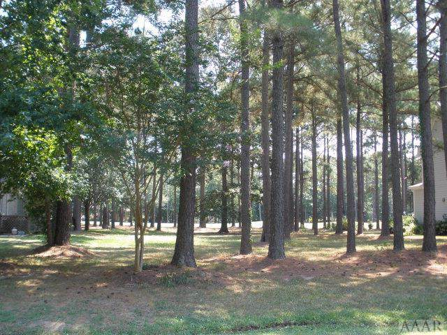 TBD Croatan Drive, Hertford, NC 27944 (MLS #97076) :: Chantel Ray Real Estate