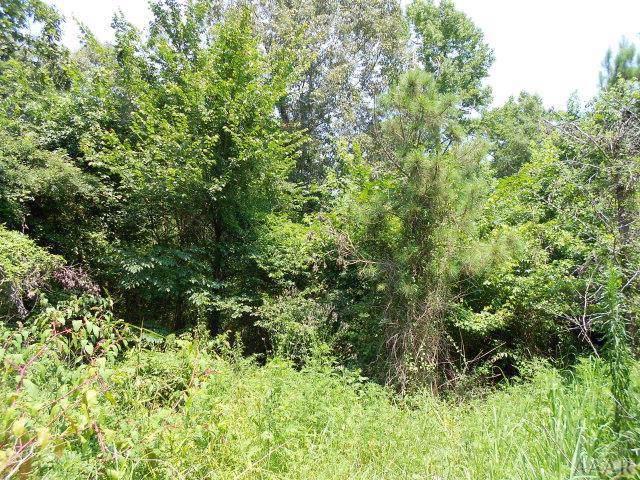 1 Rollings Lane, Hertford, NC 27944 (MLS #97160) :: Chantel Ray Real Estate