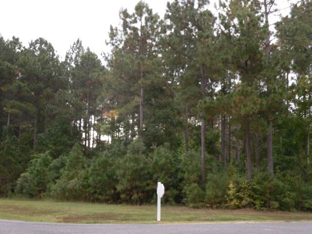 TBD Boshers Point Dr, Hertford, NC 27944 (#97338) :: The Kris Weaver Real Estate Team