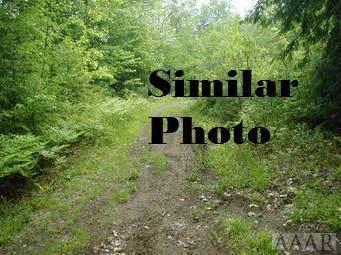 0 Marigold Road, Shiloh, NC 27974 (MLS #97354) :: AtCoastal Realty