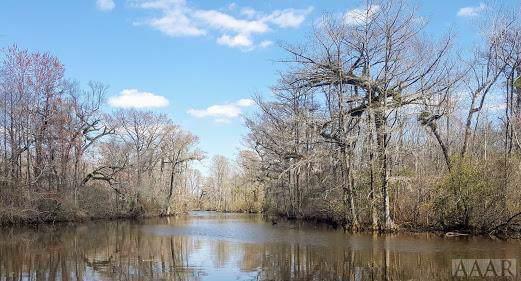 1610 Fox Trail, Edenton, NC 27932 (MLS #97493) :: Chantel Ray Real Estate