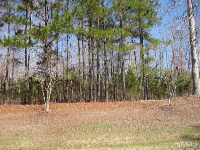 TBD Beech Point Dr, Hertford, NC 27944 (#98003) :: The Kris Weaver Real Estate Team
