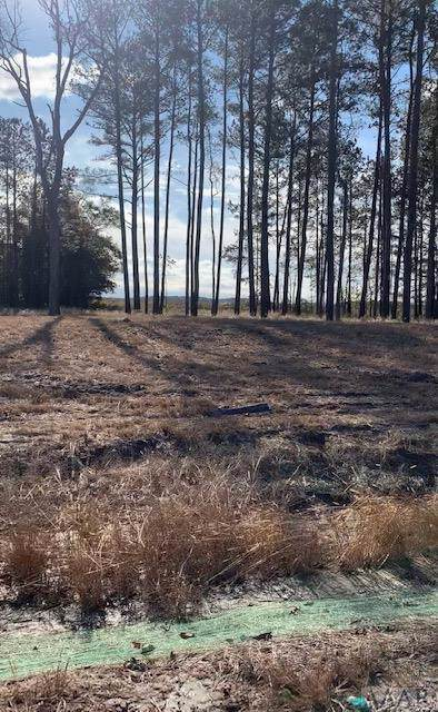 109 Foxglove Drive, Moyock, NC 27958 (MLS #98033) :: Chantel Ray Real Estate