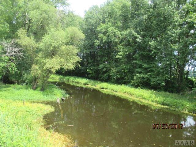 TBD Sandy Cross Road, Belvidere, NC 27919 (MLS #98519) :: Chantel Ray Real Estate