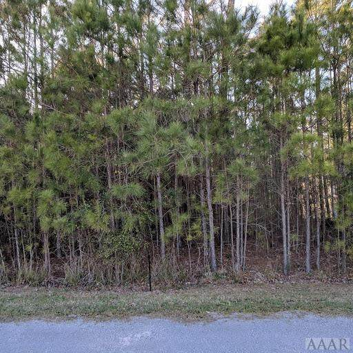 00 Evergreen Drive, Hertford, NC 27944 (MLS #98921) :: Chantel Ray Real Estate