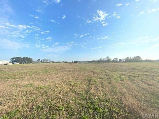 912 Gliden Road, Belvidere, NC 27919 (MLS #99024) :: Chantel Ray Real Estate