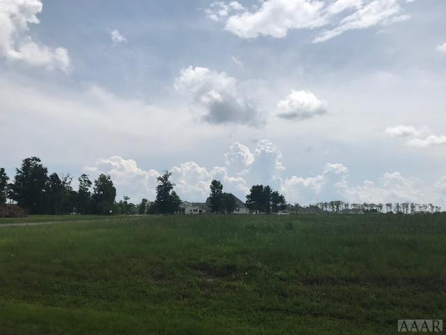 446 Pointe Vista Drive, Elizabeth City, NC 27909 (MLS #91866) :: AtCoastal Realty