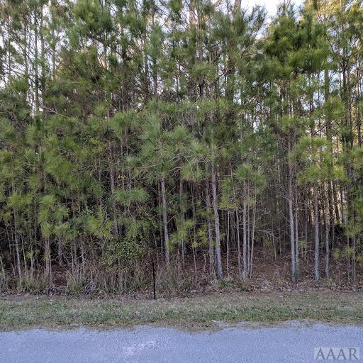 lot #73L Chestnut Street, Hertford, NC 27944 (MLS #94559) :: Chantel Ray Real Estate