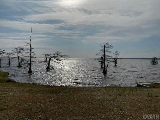 424 Batchelor Bay Dr, Windsor, NC 27983 (MLS #98875) :: Chantel Ray Real Estate