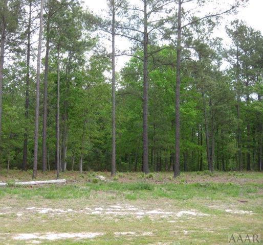 TBD Christine Court, Hertford, NC 27944 (MLS #97168) :: Chantel Ray Real Estate