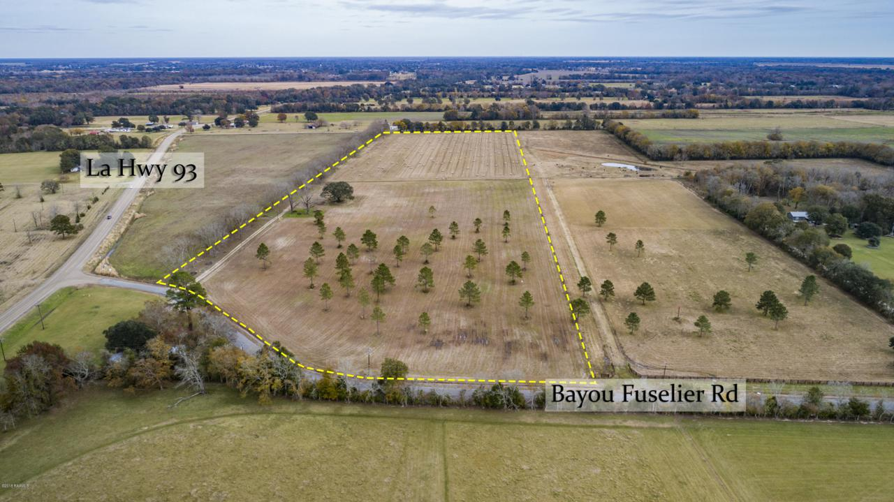 Bayou Fuselier Road - Photo 1