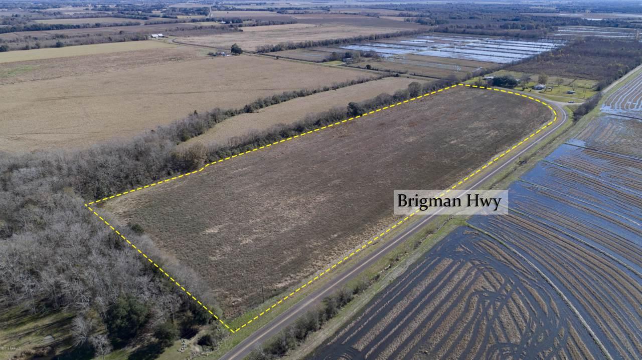 Tbd Brigman Hwy - Photo 1