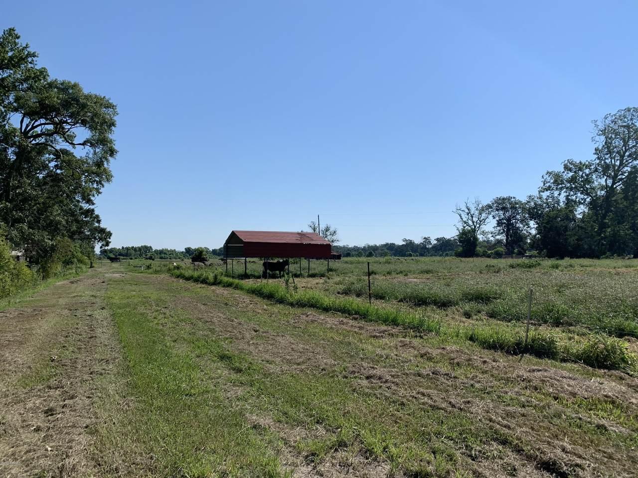 2309 Sugar Mill (72 Acres) Road - Photo 1