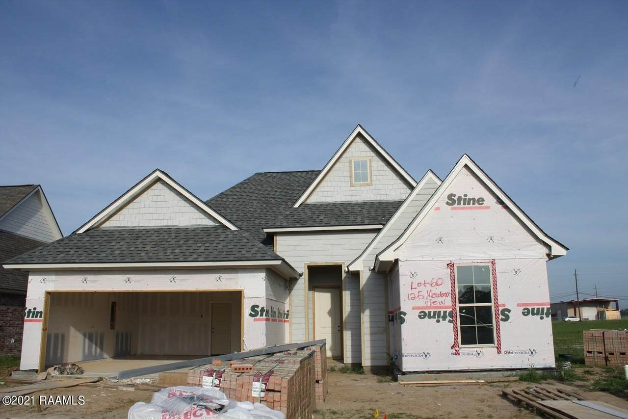 125 Meadow View - Photo 1