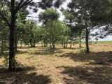 Tbd Prairie Ronde Hwy - Photo 1