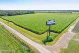 Tbd Frontage Rd & Edith Toney Drive - Photo 3