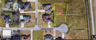 303 Jehnna Dave Drive, Broussard, LA 70518 (MLS #17002779) :: Keaty Real Estate