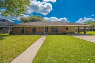 1616 Southwood Drive, New Iberia, LA 70560 (MLS #17002829) :: Keaty Real Estate