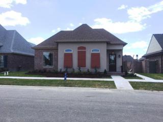 422 Evangeline Trail, Breaux Bridge, LA 70517 (MLS #17003544) :: Keaty Real Estate