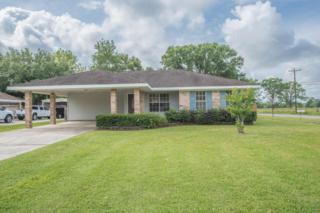 100 Bermuda Circle, Scott, LA 70583 (MLS #17003641) :: Keaty Real Estate