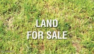 500 Sabbath Road, Youngsville, LA 70592 (MLS #17004026) :: Keaty Real Estate