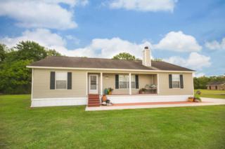 1043 Bin Rogers, Breaux Bridge, LA 70517 (MLS #17004083) :: Keaty Real Estate