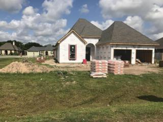 112 Wadesboro Road, Carencro, LA 70520 (MLS #17004098) :: Keaty Real Estate