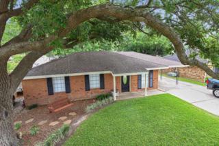 121 Westward Avenue, Scott, LA 70583 (MLS #17002711) :: Keaty Real Estate
