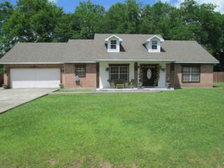 206 Hesper Drive, Carencro, LA 70520 (MLS #17003762) :: Keaty Real Estate
