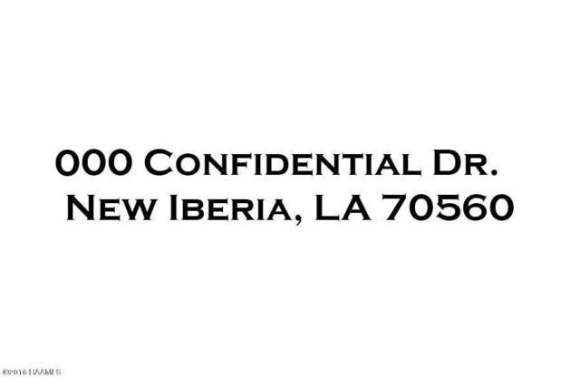 000 Confidential Drive, New Iberia, LA 70560 (MLS #16009928) :: Red Door Team   Keller Williams Realty Acadiana