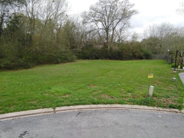 104 Joshua Circle, Lafayette, LA 70508 (MLS #17001824) :: Keaty Real Estate