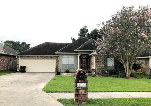 201 Olive Vista Drive, Scott, LA 70583 (MLS #17006225) :: Keaty Real Estate