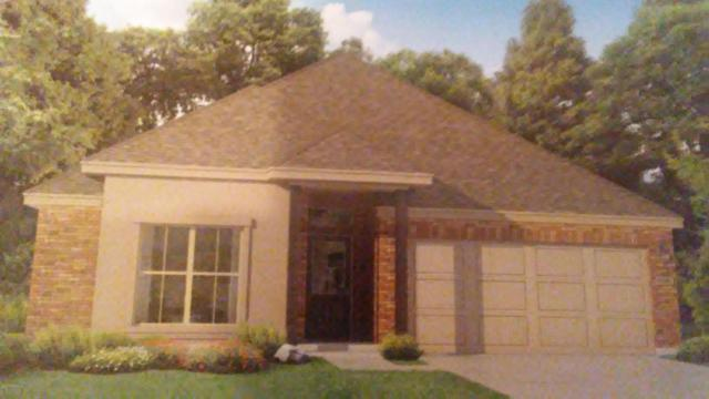 307 Old Silo Road, Rayne, LA 70578 (MLS #17008435) :: Keaty Real Estate