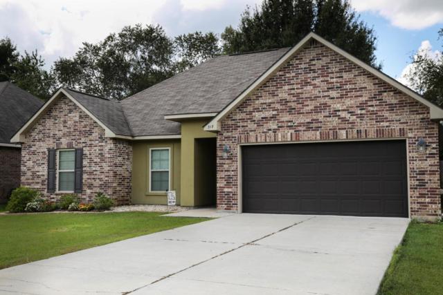 317 Magnolia Knee Drive, Carencro, LA 70520 (MLS #17009381) :: Red Door Realty