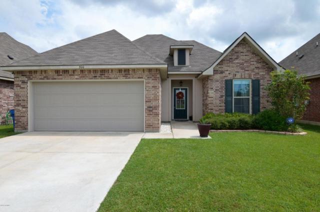 500 Magnolia Knee Drive, Carencro, LA 70520 (MLS #17009474) :: Red Door Realty